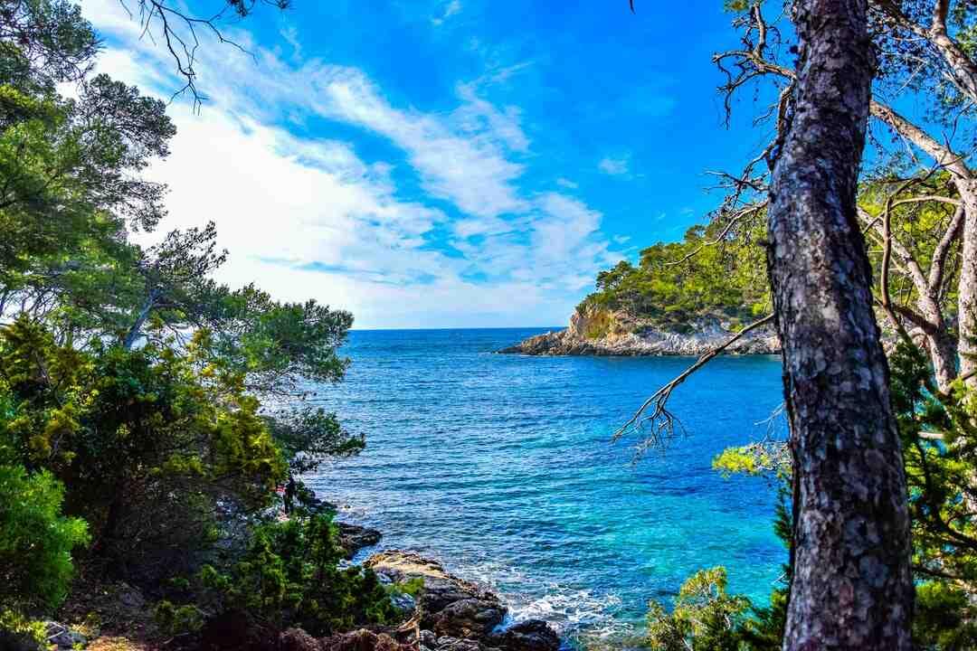 Où pêcher à pied à l'île d'Oléron ?